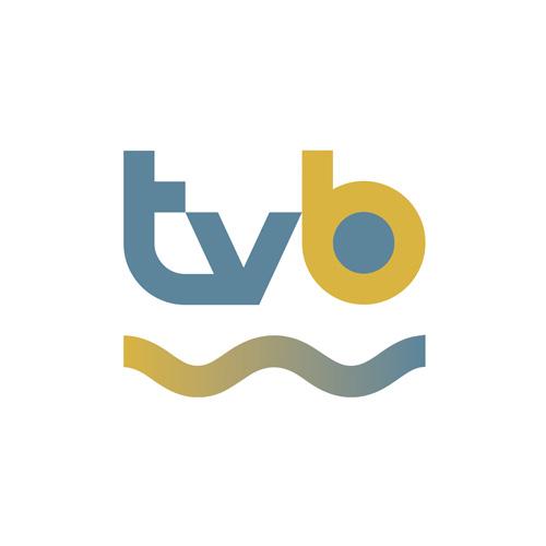 Radio Televisión Buñol - Diseño web, diseño gráfico